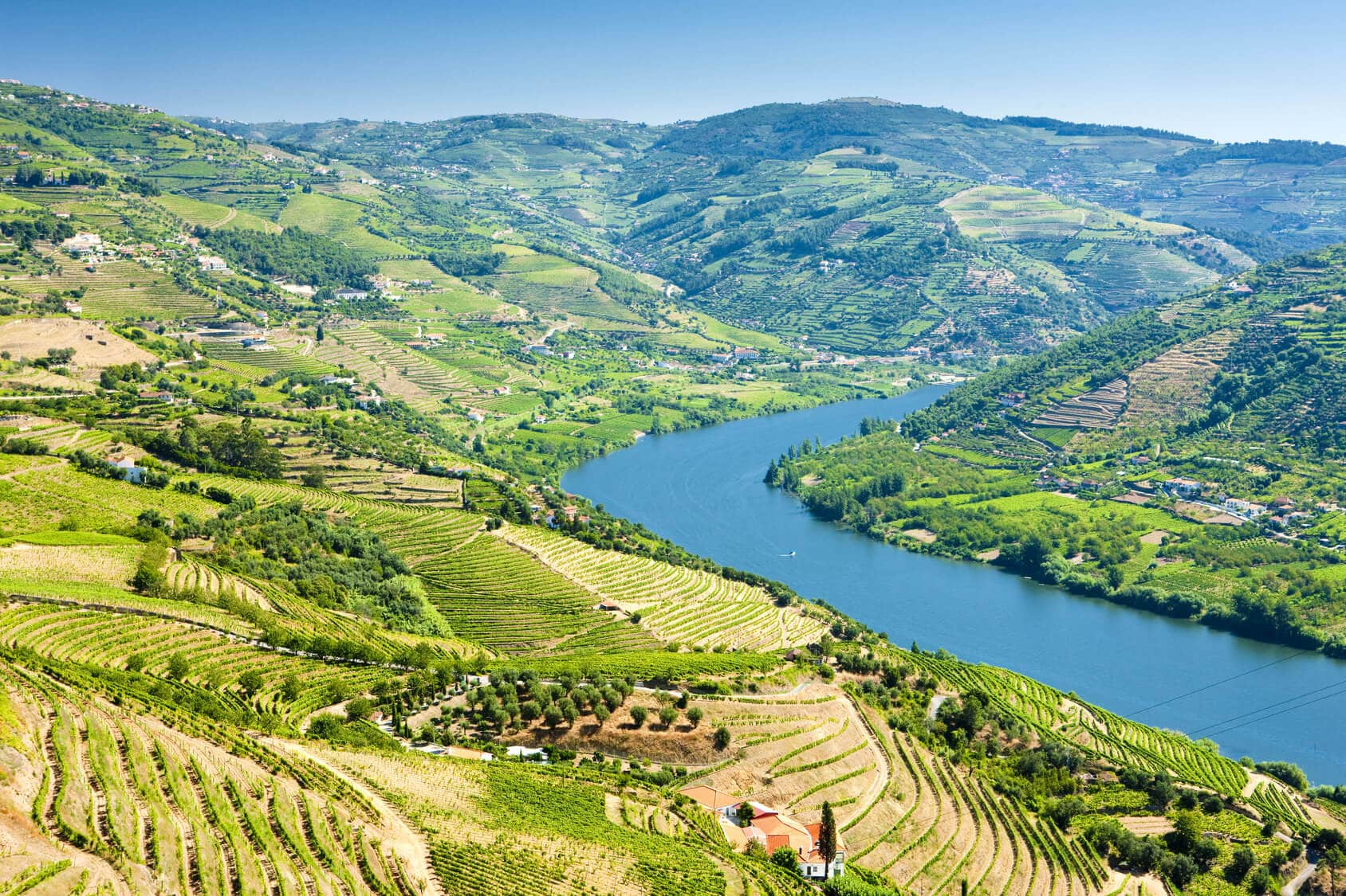 Circuito Privado Porto : Douro Valley