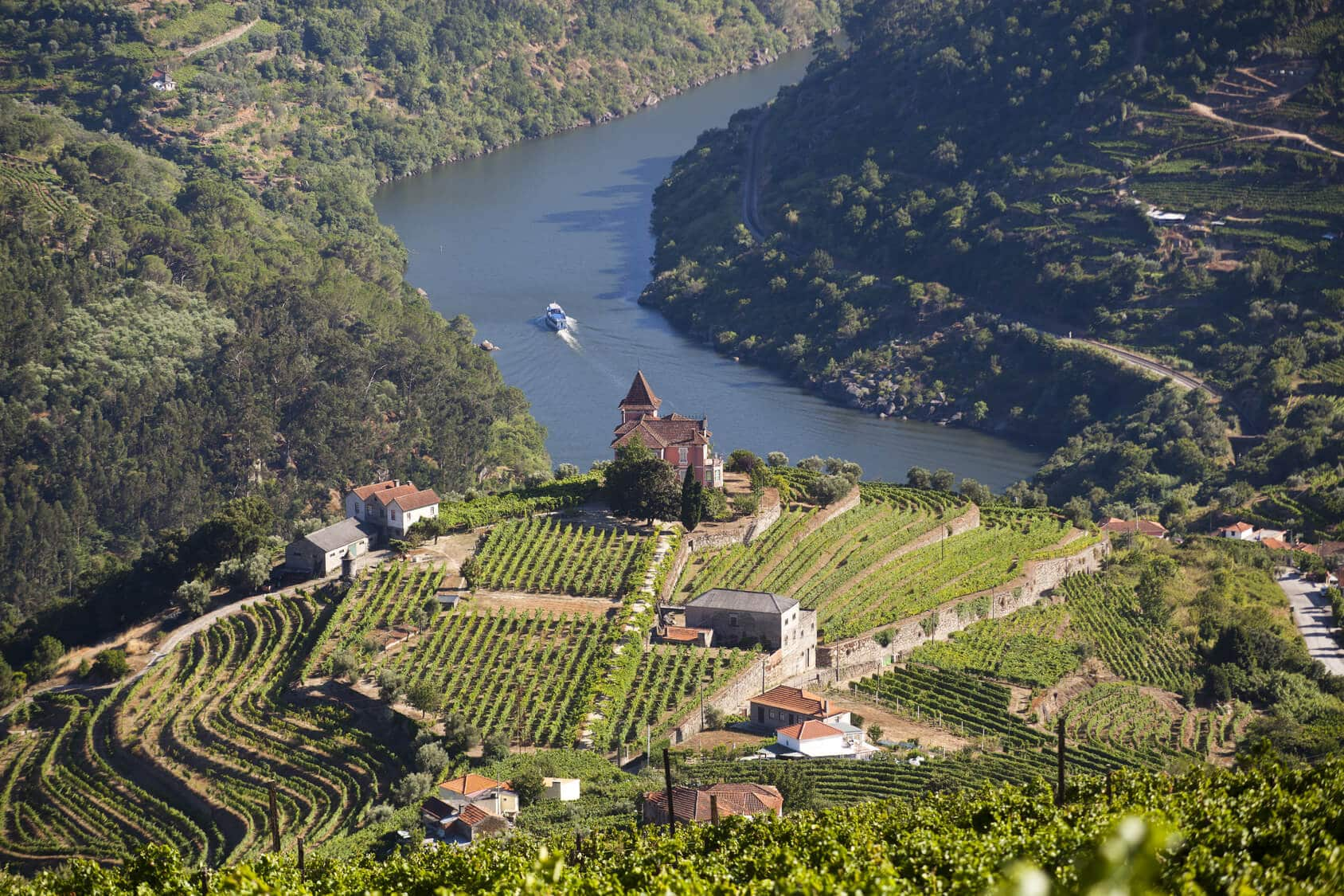 Douro Valley Tour of the River