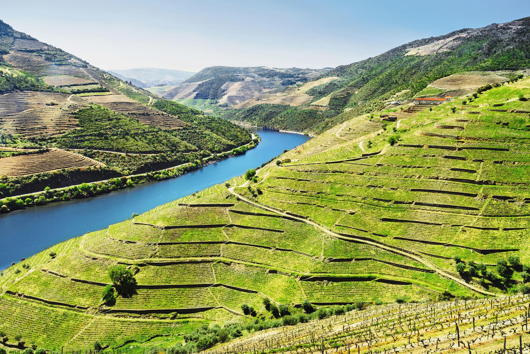 Circuito Portugal 8 Dias - Douro Valley