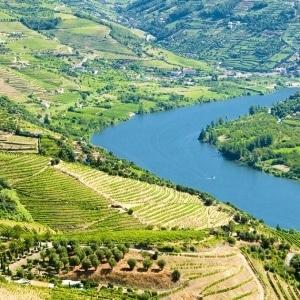 Circuito Privado Porto : Foto do Douro Valley